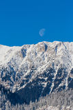 Sunrise in the mountains, with snow covered peaks, frost covered fir trees and setting moon Stock Photo