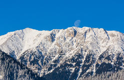Sunrise in the mountains, with snow covered peaks, frost covered fir trees and setting moon Royalty Free Stock Images
