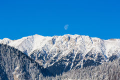 Sunrise in the mountains, with snow covered peaks, frost covered fir trees and setting moon Stock Photos