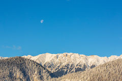 Sunrise in the mountains, with snow covered peaks, frost covered fir trees and setting moon Royalty Free Stock Image