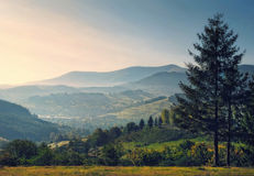 Sunrise mountains and summer valley Royalty Free Stock Photography