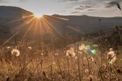 Sunrise in the mountains stock photos