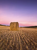 Sunrise in a mowed wheat field. Mowed wheat field with the light of dawn. Field lines converging on a bale of straw Royalty Free Stock Image