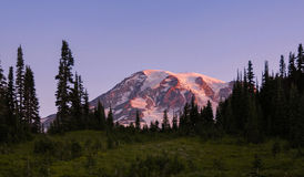 Sunrise At Mt Rainier National Park Near Paradise Royalty Free Stock Image