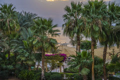 Sunrise of Naama Bay Stock Photos