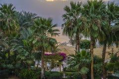 Sunrise of Naama Bay Stock Photos