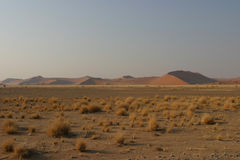 Sunrise namib desert. Wide plain with dry grass vegetation with the first red sand dunes of the namib desert in the background stock photo
