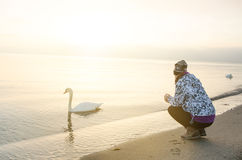 Sunrise in a nature. Girl and swan. sea like a background. Copenhagen 1.3.2015 Royalty Free Stock Photos