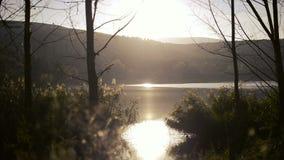 Sunrise nature on the lake