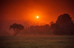 Sunrise in nature stock images