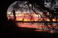 Sunrise November 12, 2016. Sunrise over the north end of Lake Hartridge, Winter Haven, Florida on 11/12/2016 Royalty Free Stock Photos