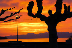Sunrise in Nyon Switzerland. Weather, sunrise with bright, colors in clouds, concept for early morning, wake-up Royalty Free Stock Photography