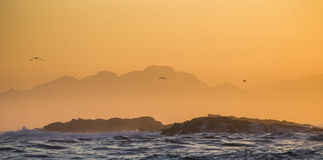 Sunrise on the ocean. Cape Town. False Bay. South Africa. An excellent illustration Stock Images