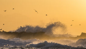 Sunrise on the ocean. Cape Town. False Bay. South Africa. An excellent illustration Stock Photography