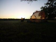 Sunrise on the Okavango delta. Tent and sunrise on the Okavango delta in Botswana royalty free stock images