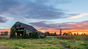 Sunrise Old Fram Shed Royalty Free Stock Image