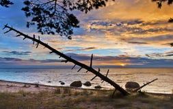 Sunrise On Baltic Sea, Kaltene Stock Image