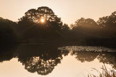 Sunrise at the Ornamental Lake royalty free stock photography