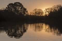 Sunrise at the Ornamental Pond, Southampton Common royalty free stock photos