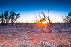 Sunrise in outback Australia. Stock Photo