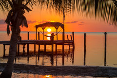 Free Sunrise Over A Hammock In Key West, Florida Royalty Free Stock Photography - 76258247