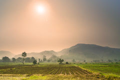 Sunrise over agriculture farm in Chiangmai Thailand Royalty Free Stock Image