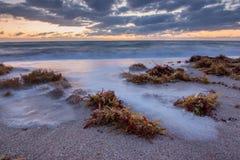 Sunrise over Atlantic Ocean in Florida. Stock Photography