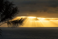Sunrise over the atlantic ocean. Madeira, Portugal Stock Photos
