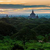 Sunrise over Bagan temples, Myanmar Royalty Free Stock Photography