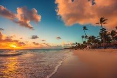 Sunrise over the beach. Punta Cana Royalty Free Stock Photos