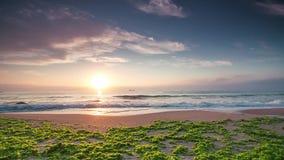 Sunrise over the beach, video stock footage