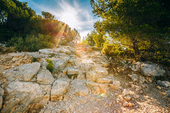 Sunrise over beautiful nature of Calanques on the azure coast of Royalty Free Stock Images