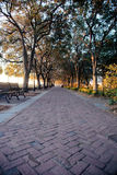 Sunrise over brick path. A sunrise in the city with an empty brick path in a park Royalty Free Stock Photography