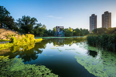 Sunrise over buildings and the Harlem Meer, in Manhattan, New Yo Stock Images