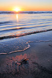 Sunrise over calm ocean Royalty Free Stock Image