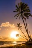 Sunrise over Caribbean sea Royalty Free Stock Photos