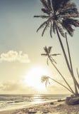 Sunrise over Caribbean sea Stock Photography