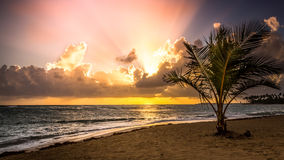 Sunrise over caribbean sea Royalty Free Stock Image