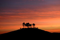 Sunrise over Colmer's Hill Stock Photography