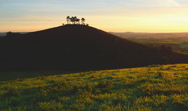 Sunrise over Colmer's Hill Stock Images