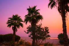 Sunrise over Dead Sea Stock Images