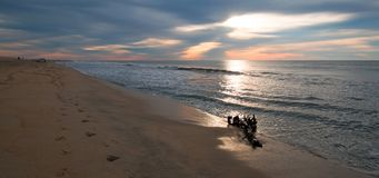 Sunrise over driftwood on beach in San Jose Del Cabo in Baja California Mexico. BCS Royalty Free Stock Photos