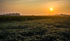 Sunrise over farm fields in rural York County, Pennsylvania. Stock Images