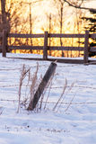 Sunrise over a fence. Winter sunrise over a wood fence Royalty Free Stock Photos