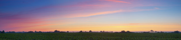 Sunrise over field Stock Image