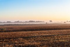 Sunrise over a field in the fog Stock Photo