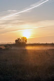 Sunrise over a field in the fog Royalty Free Stock Images