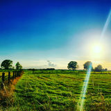Sunrise over a Field Royalty Free Stock Photography