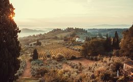 Sunrise over fields of Tuscany. Wineyards, garden trees, villas of countryside at early morning time, Italy royalty free stock images
