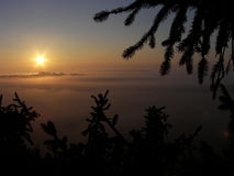 Sunrise over Fog. An Indiana tree climb with a great view over fog from an 80 ft tall pine tree royalty free stock photo
